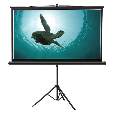 Wide Format Wall Mount Projection Screen