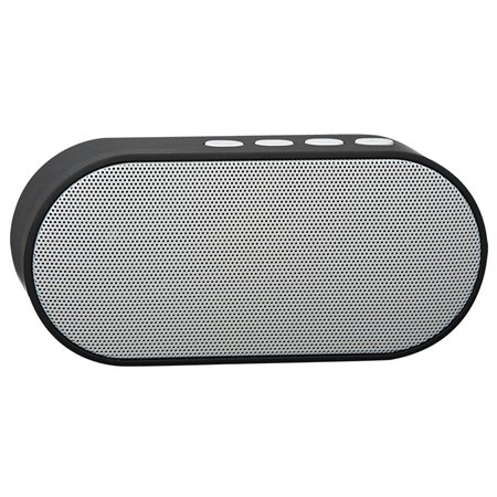 Haut-parleur portable Bluetooth