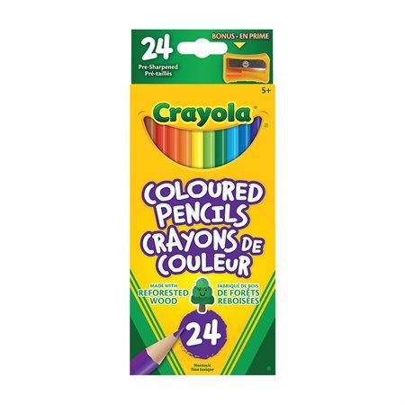 Crayola® Wood  Colouring Pencils